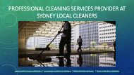 Professional Cleaning Services-converted