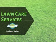 Pros & Cons of DIY Lawn Care Vs. Professional Lawn Care in Texas