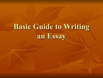 Basic Guide to Writing Essay