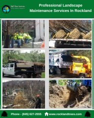 Professional Landscape Maintenance Services In Rockland
