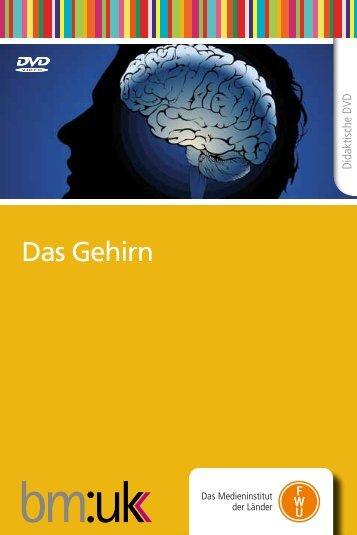 Das Gehirn - FWU