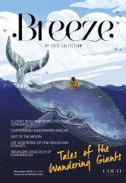 Breeze_Issue_008_Tales_of_the_Wandering_giants
