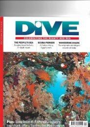 Artikel-im-DIVE-1-Dez-18