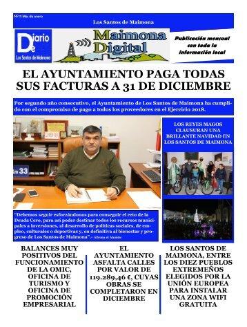 Diario Local Enero 2019