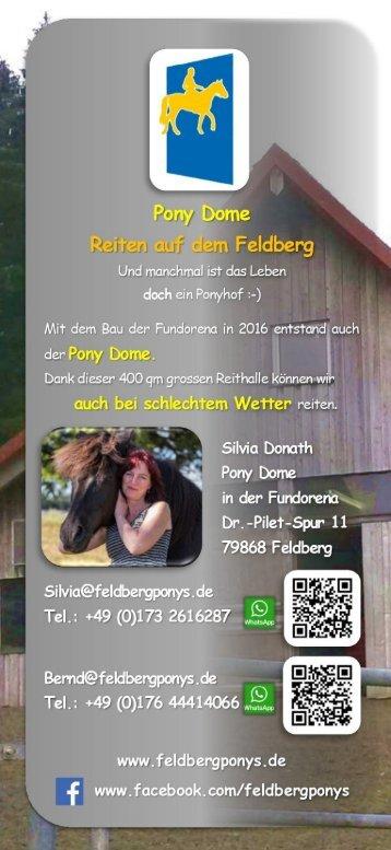 Flyer - Feldbergponys - 2019 I