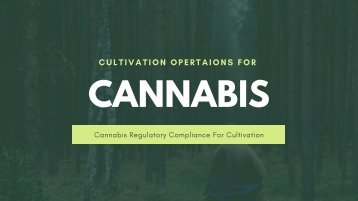 Cannabis Regulatory Compliance | Cultivation Operation | Global Cannect