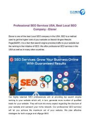 Professional SEO Services USA, Best Local SEO Company - Elsner