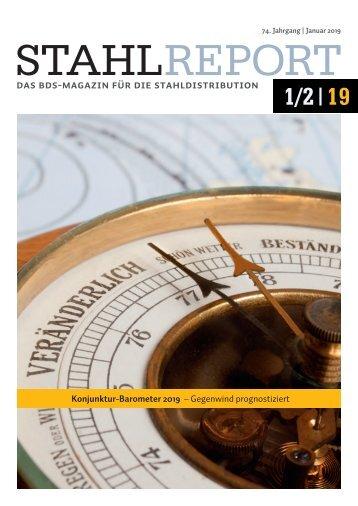Stahlreport 2019.01