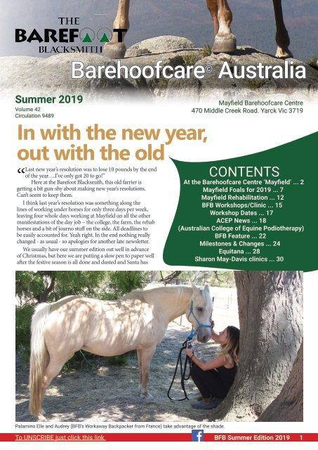 Newsletter Summer 2019