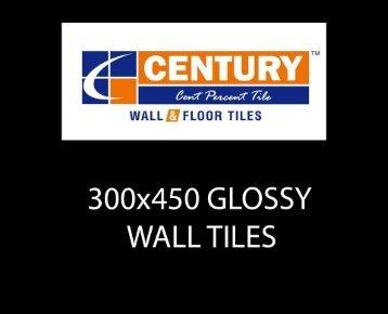 300x450mm glossy new-1