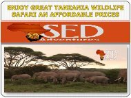 ENJOY GREAT TANZANIA WILDLIFE SAFARI AN AFFORDABLE PRICES