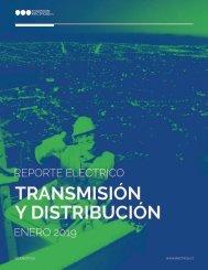 REPORTE ELÉCTRICO ENERO 2019