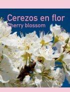 Cerezos en flor - Page 2