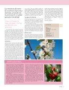 Cerezos en flor - Page 5