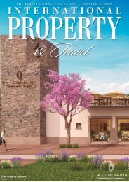 International property & travel La Luminaria San Miguel de Allende