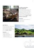 Sommerschätze aus Liechtenstein - Page 7