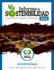 Informe de Sostenibilidad 2018 CCT