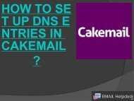 SET UP DNS ENTRIES IN CAKEMAIL.
