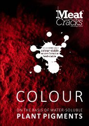 Meat Cracks - Farbsysteme EN