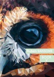 SANSONE RUBEN - BOOK
