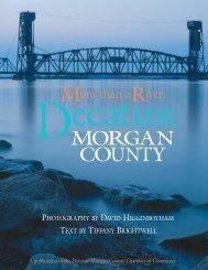 More Than a River - Decatur-Morgan County