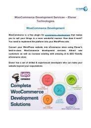 WooCommerce Development Services – Elsner Technologies