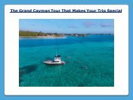 The Grand Cayman Tour