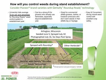 How will you control weeds during stand establishment? - Pioneer