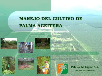 001Manejo cultivo palma aceitera-Palma del Espino SA