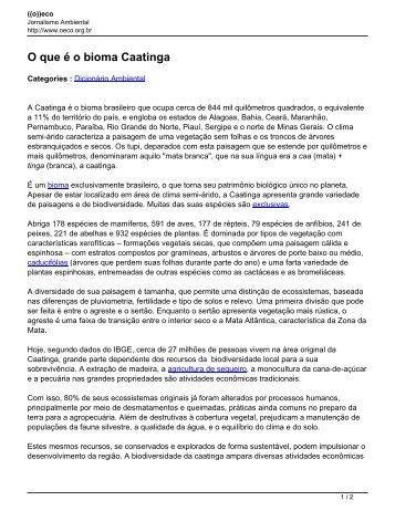 O que é o Bioma Caatinga