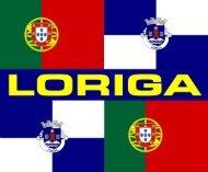Brasão de Loriga - História do Brasão de Loriga - Pequeno resumo do processo