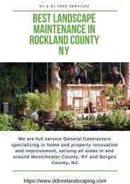 Best Landscape Maintenance in Rockland County NY