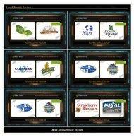 Logo & Branding Portfolio 1