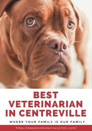 BEST VETERINARIAN IN CENTREVILLE
