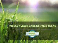 Weekly lawn care service for Spring season in TX – GoMow