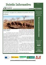 Boletín-nº61-febrero-2019