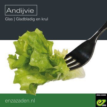 Leaflet Andijvie onder glas 2019