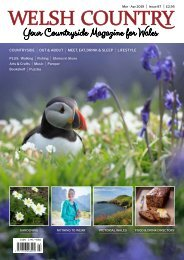 Welsh Country Mar-Apr 2019 pages 1-7