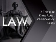 Lynette Boggs Perez | Things to Know About Child Custody Cases