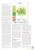 Pro Carton Magazine 2016 - ITA - Page 7