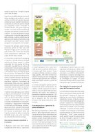 Pro-Carton-Magazin-it.-2016_1 - Page 7