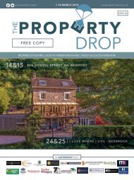Property Drop Issue 46