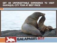 GET AN UNFORGETTABLE EXPERIENCE TO VISIT GUAYAQUIL CITY TOUR AT BEST PRICE-converted