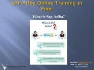 SAP Ariba Online Training in Pune blog pdf