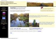 PDF-Dokument runterladen - wo-wir-waren