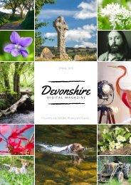 Devonshire ezine Spring 19