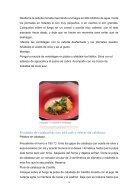 Ensalada de espárrago y emulsión de limón-convertido - Page 5