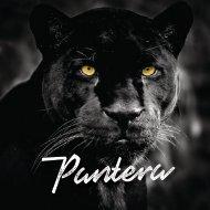 Brochure Digital - Pantera