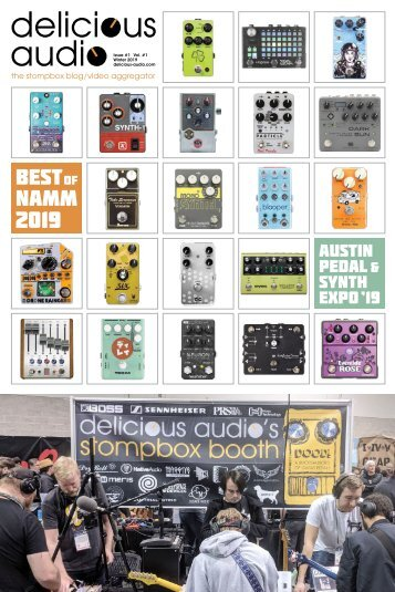 Delicious Audio - Best Pedals of NAMM 2019 - Best Pedals of 2018 - Austin Pedal and Synth Expo