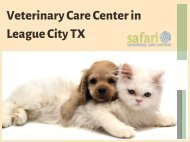 Safari Vet - Customer Reviews One of the best veterinary clinics in League City